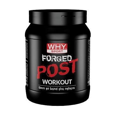 Forged Post Workout 600g – Why Sport