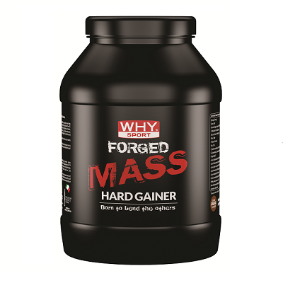 Forged Mass Hard Gainer 1000g Cacao – Why Sport