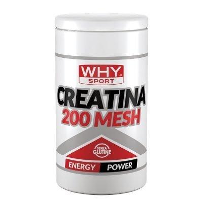 Creatina 200 Mesh 500g – Why Sport