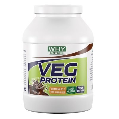 Veg Protein 750g – Why Nature
