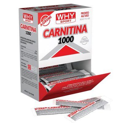 Carnitina 1000 Stick – Why Sport