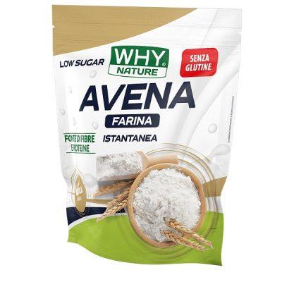 Farina d'avena 1Kg Gluten Free – Why Nature